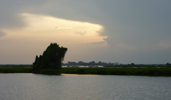 View of swamps near Mompox