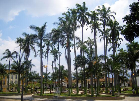 Parque Rovira, Bucaramanga