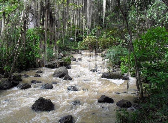 Parque Natural El Gallineral, San Gil, Colombia