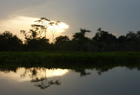 Sunset over Mompox Swamp