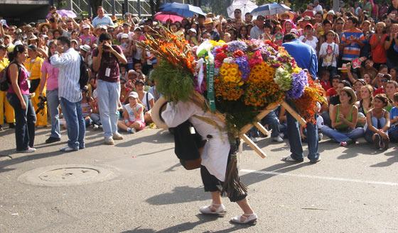 A 'silletera' carrying a flower decoration at the Feria de Las Flores, Medellin