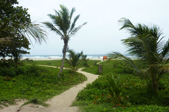 Entrance to Arecifes beach, Parque Tayrona
